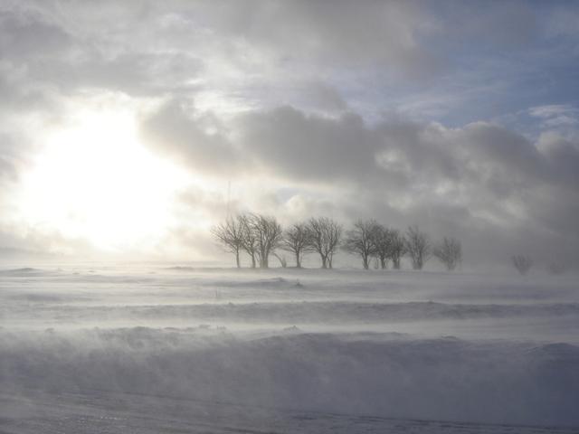 Winter Storm Warning in Minneapolis